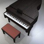 有吉反省会の石田桃子はピアノだけじゃない、石田純一の姉が面白い